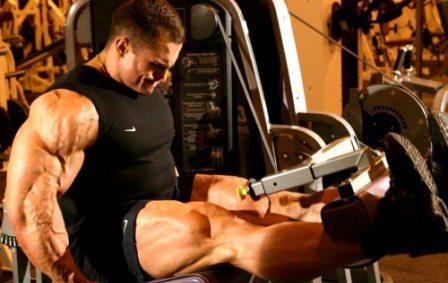 бодибилдер, полный курс упражнений для начинающих, бодибилдинг упражнения для всех программа тренировок