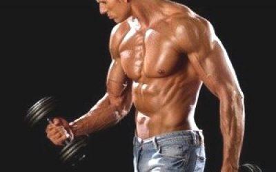 тестостерон у мужчин, тестостерон у женщин, тренировка плеч гантелями для мужчин