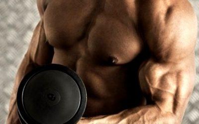 Как накачать мышцы рук в домашних условиях быстро, как накачать руки в зале, упражнения на руки