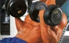 Сохранение мышц или сжигание жира?