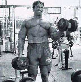 Какие мышцы сколько раз в неделю нужно качать