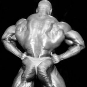 мышцы спины, как накачать мышцы поясницы, как укрепить поясницу