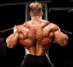 широчайшие мышцы спины- упражнения для мышц спины