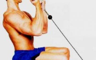 кпражнения для мышц рук