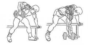 упражнения для спины в зале и дома