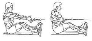 упражнения для спины в зале
