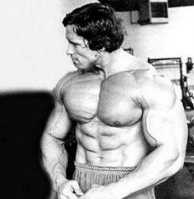 Арнольд Шварценеггер, упражнения на растяжку для начинающих, растяжка всего тела для мужчин и женщин, в домашних условиях, комплекс упражнений на растяжку