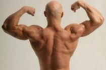 Как накачать мышцы рук самостоятельно