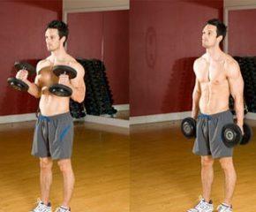 Эффективные силовые упражнения для рук