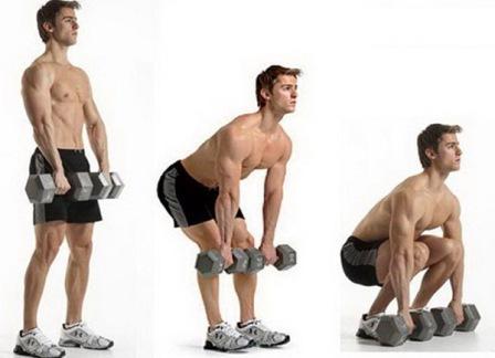 упражнения с гантелями для укрепления мышц спины