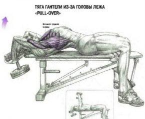лучшие силовые упражнения для груди