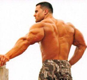 Бодибилдинг, фитнес и физкультура