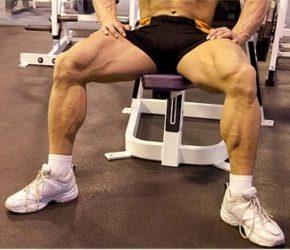 Силовые упражнения на ноги в тренажерном зале и дома