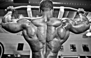 лучшие упражнения для спины в тренажерном зале