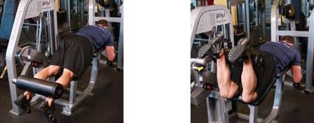 Тренировка ног в тренажерном зале- Программа тренировки ног