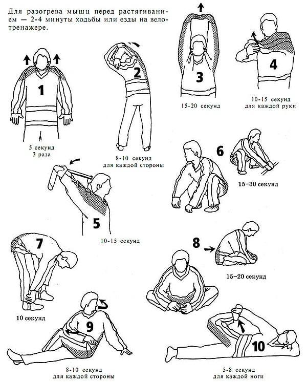 Стретчинг упражнения для спортсменов и любителей