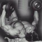 силовые тренировки на все группы мышц