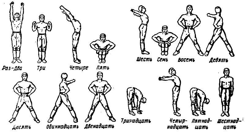 Эффективная производственная гимнастика комплекс упражнений с картинками на каждый день
