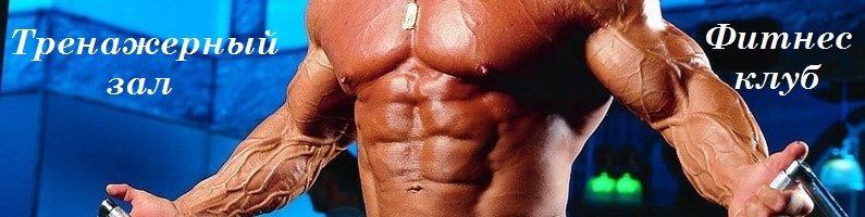 Бодибилдинг и фитнес программы тренировок, как накачать мышцы, сбросить лишний вес